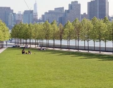 Roosevelt Island New York City Neighborhood Photo