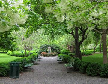Gramercy Park New York City Neighborhood Photo