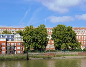 Pimlico London Neighborhood Photo