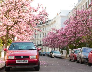 Notting Hill London Neighborhood Photo