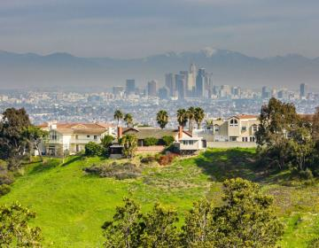 Baldwin Hills Los Angeles Neighborhood Photo
