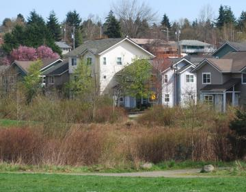 Roxhill Seattle Neighborhood Photo