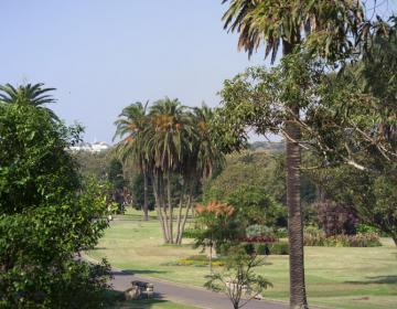Centennial Park Sydney Neighborhood Photo