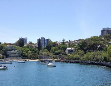 Lavendar Bay Sydney Neighborhood Photo