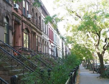 Prospect Heights New York City Neighborhood Photo
