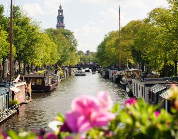 Jordaan Amsterdam Neighborhood Guide