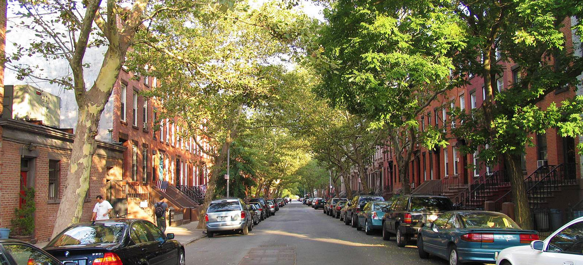 Carroll Gardens New York City Neighborhood Photo