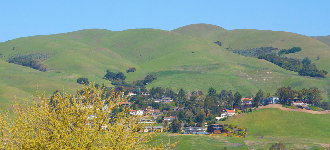 Milpitas Silicon Valley City Image