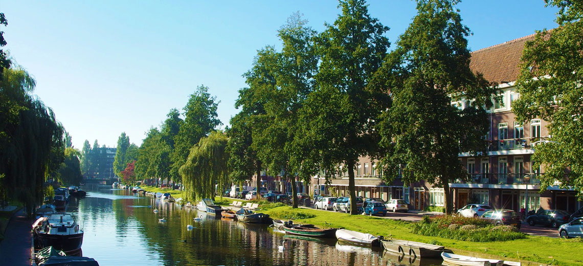 De Baarsjes Amsterdam Neighborhood Guide