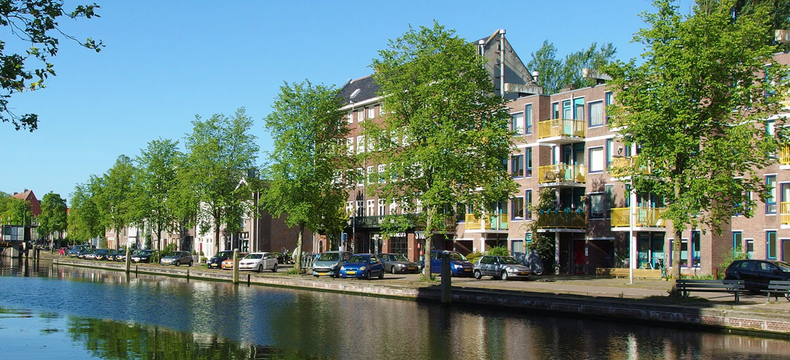 Oud Zuid Amsterdam Neighborhood Guide