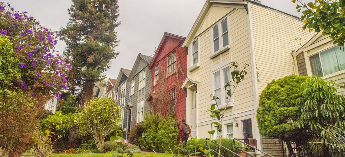 Lower Pacific Heights San Francisco Neighborhood Guide